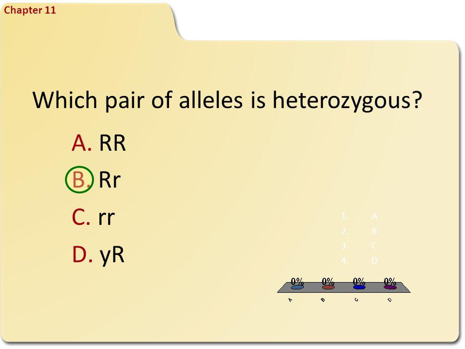 FQ 6 Chapter 11 Which pair of alleles is heterozygous? A. RR B. Rr C. rr D. yR 1.A 2.B 3.C 4.D
