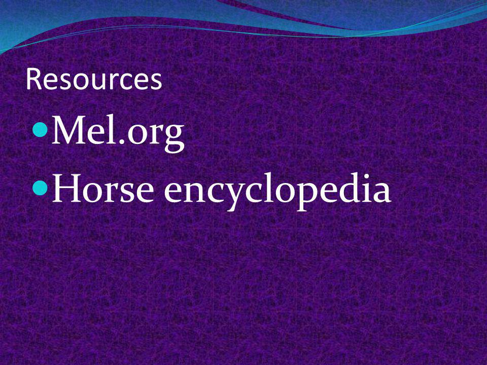 Resources Mel.org Horse encyclopedia