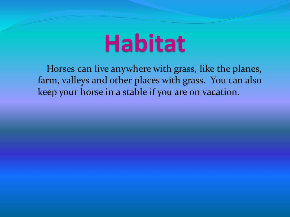 Habitat Horses can live anywhere with grass, like the planes, farm, valleys and other places with grass.