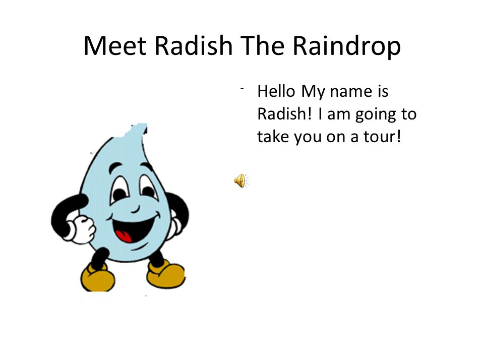 Meet Radish The Raindrop Hello My name is Radish! I am going to take you on a tour!