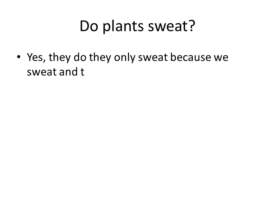 Do plants sweat? Yes, they do they only sweat because we sweat and t
