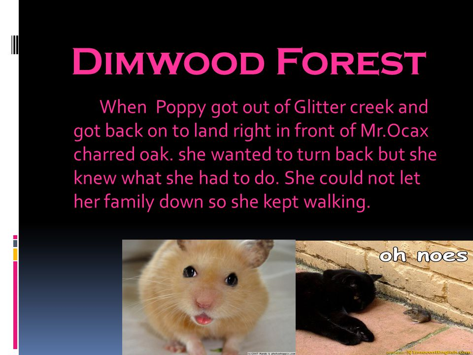 Dimwood Forest When Poppy got out of Glitter creek and got back on to land right in front of Mr.Ocax charred oak.