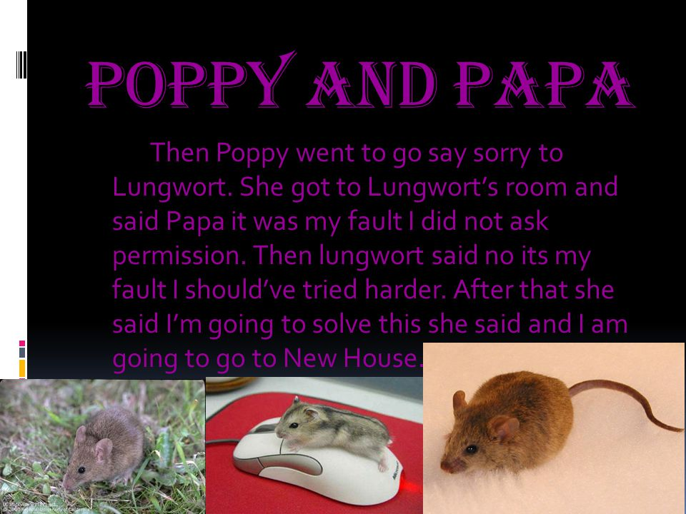 Poppy and Papa Then Poppy went to go say sorry to Lungwort.