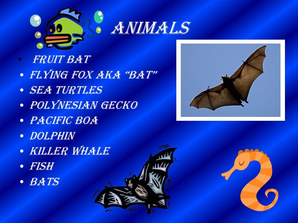 "Animals Fruit Bat Flying Fox aka ""bat"" Sea turtles Polynesian gecko Pacific boa Dolphin Killer whale Fish Bats"