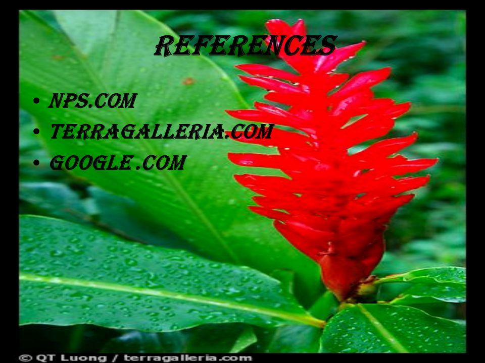 references Nps.com Terragalleria.com Google.COM