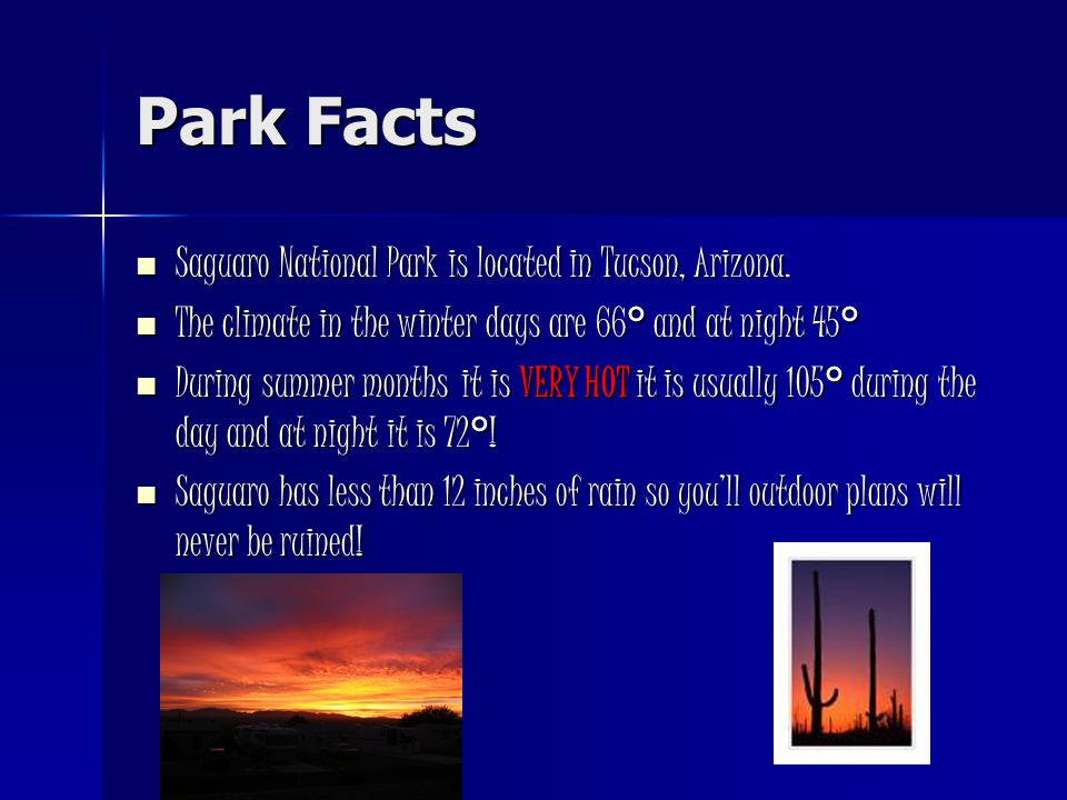 Park Facts Saguaro National Park is located in Tucson, Arizona.