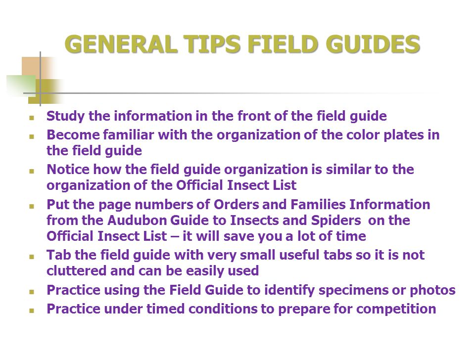 GENERAL TIPS FIELD GUIDES Study the information in the front of the field guide Become familiar with the organization of the color plates in the field