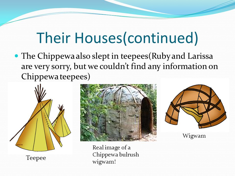 Their Houses(continued) The Chippewa also slept in teepees(Ruby and Larissa are very sorry, but we couldn't find any information on Chippewa teepees) Teepee Real image of a Chippewa bulrush wigwam.
