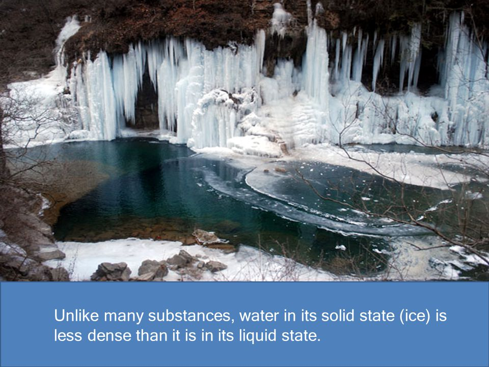 Unlike many substances, water in its solid state (ice) is less dense than it is in its liquid state.
