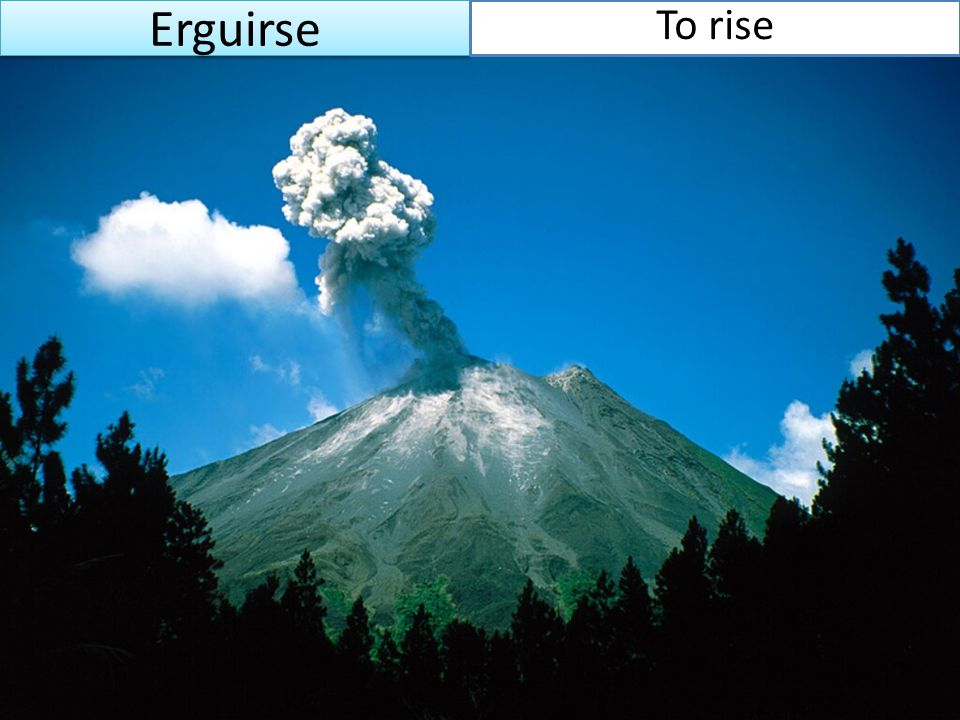 Erguirse To rise