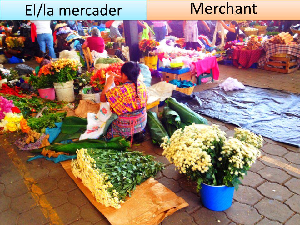 El/la mercader Merchant