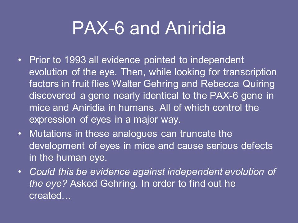 PAX-6 and Aniridia Prior to 1993 all evidence pointed to independent evolution of the eye.