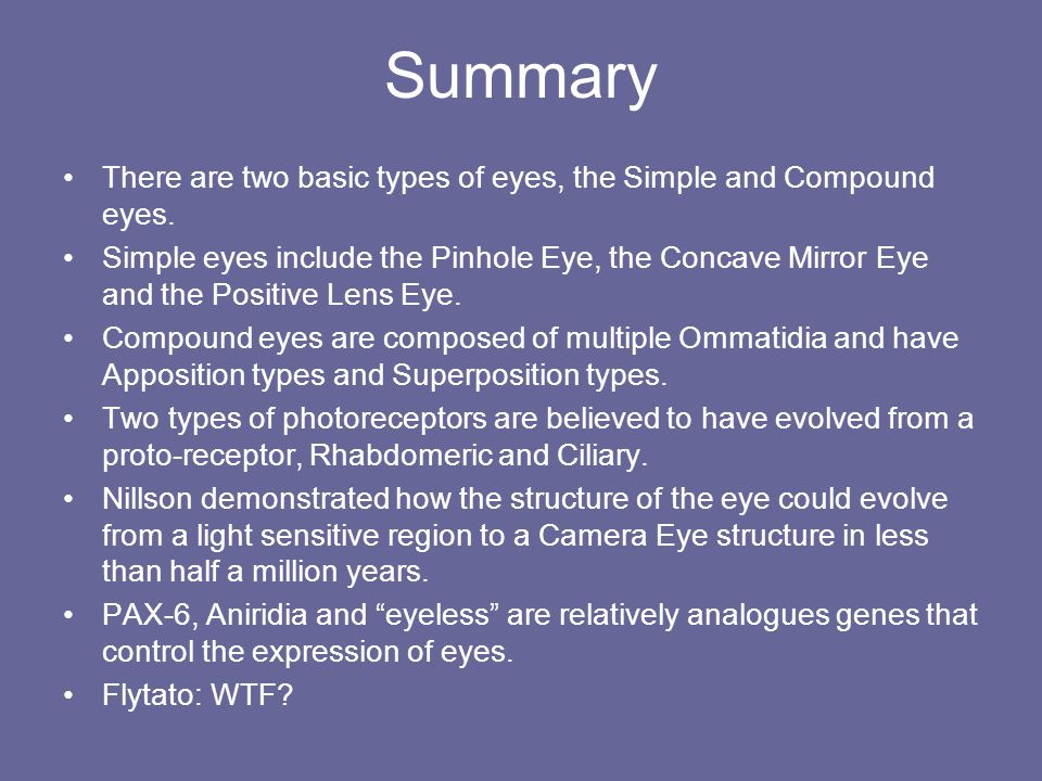 Summary There are two basic types of eyes, the Simple and Compound eyes.