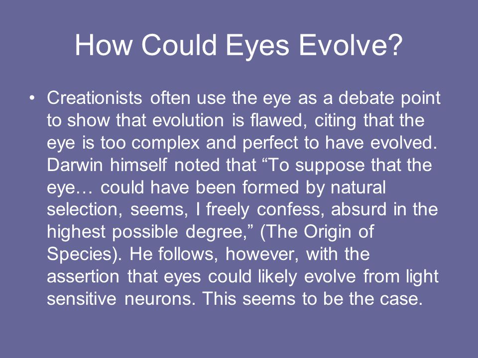 How Could Eyes Evolve.