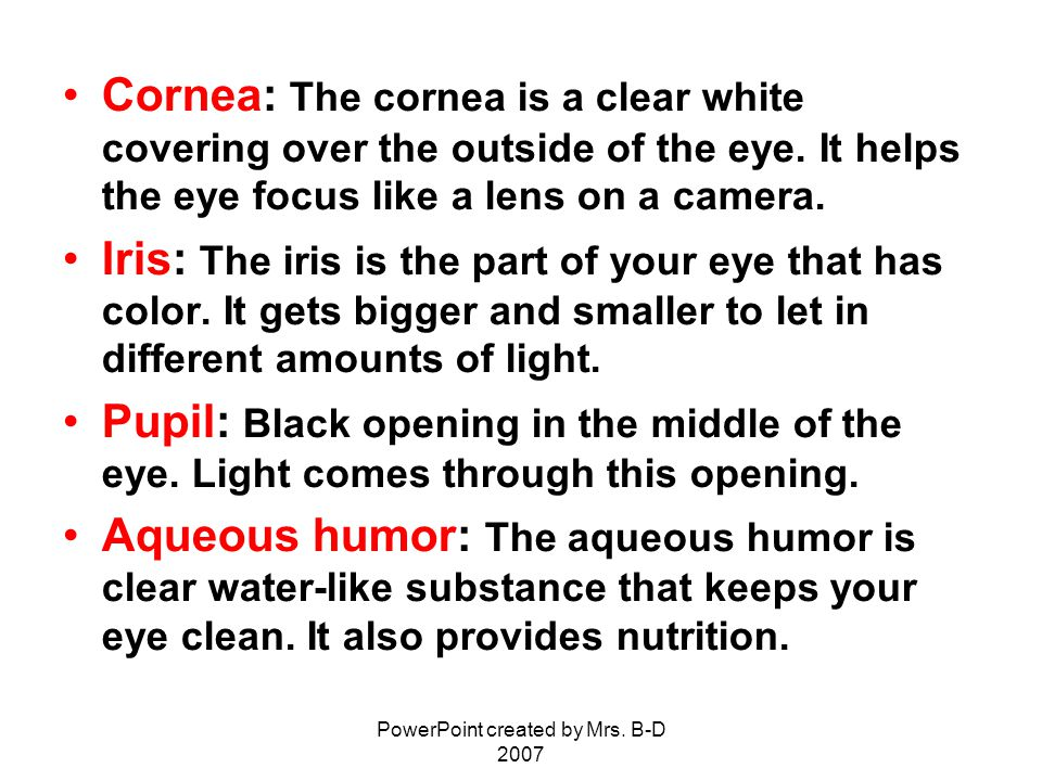 PowerPoint created by Mrs. B-D 2007 Cornea: The cornea is a clear white covering over the outside of the eye. It helps the eye focus like a lens on a