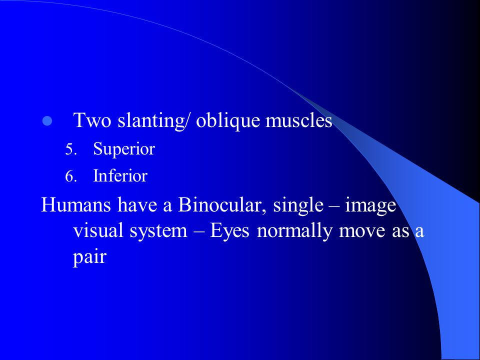Extraoccular muscles 6 muscles – Attach eyeball to orbit – Straight and rotary movement – Four straight muscles 1.