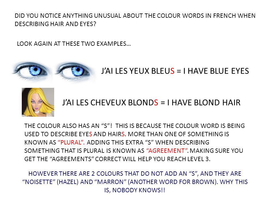 DID YOU NOTICE ANYTHING UNUSUAL ABOUT THE COLOUR WORDS IN FRENCH WHEN DESCRIBING HAIR AND EYES? LOOK AGAIN AT THESE TWO EXAMPLES… J'AI LES CHEVEUX BLO