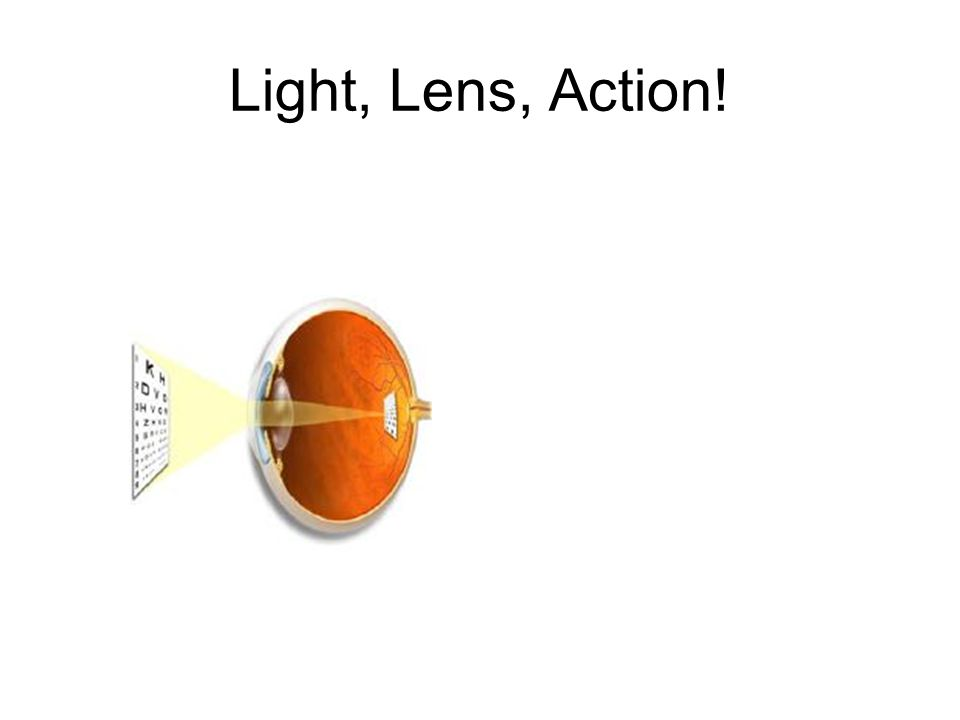 How the Eye Works Take a moment to locate an object around you.