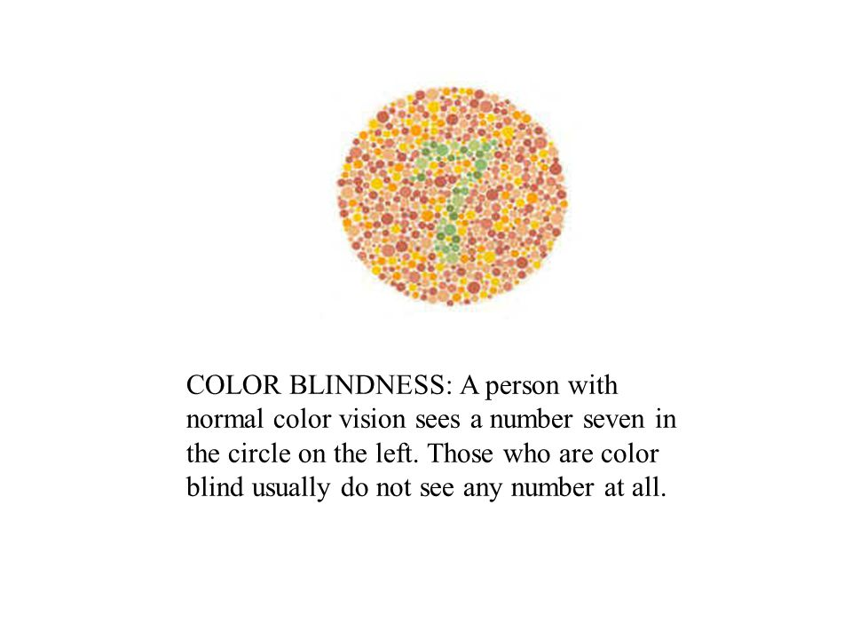 COLOR BLINDNESS: A person with normal color vision sees a number seven in the circle on the left. Those who are color blind usually do not see any num