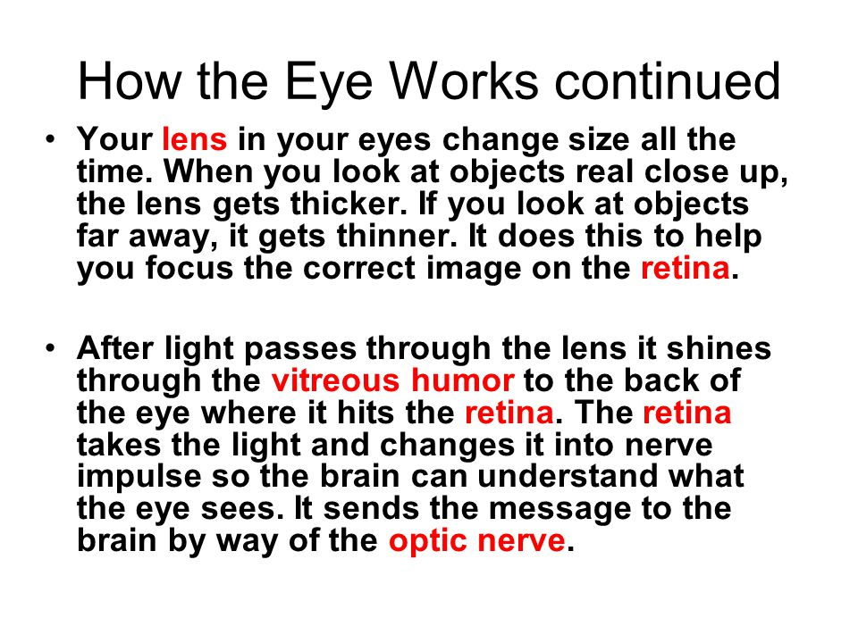 How the Eye Works continued Your lens in your eyes change size all the time. When you look at objects real close up, the lens gets thicker. If you loo