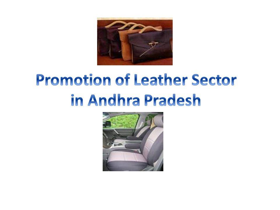 Promotion of Mega Leather Park at Rukhmapur, Karimnagar (Footwear) 1.