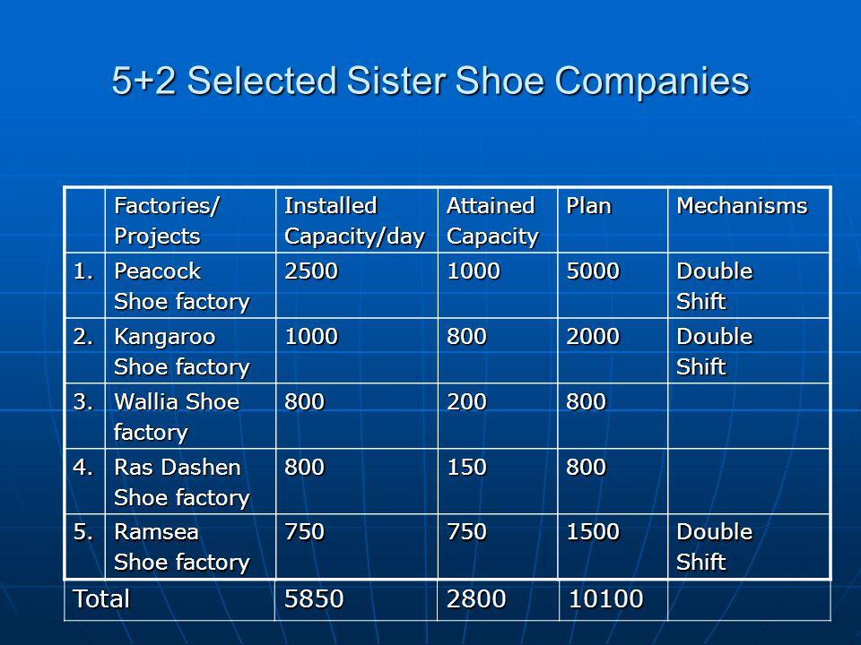 5+2 Selected Sister Shoe Companies Factories/ProjectsInstalledCapacity/dayAttainedCapacityPlanMechanisms 1.Peacock Shoe factory 250010005000DoubleShif