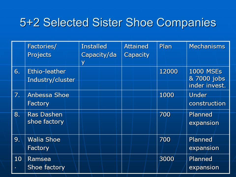 5+2 Selected Sister Shoe Companies Factories/ProjectsInstalled Capacity/da y AttainedCapacityPlanMechanisms 6.Ethio-leatherIndustry/cluster12000 1000