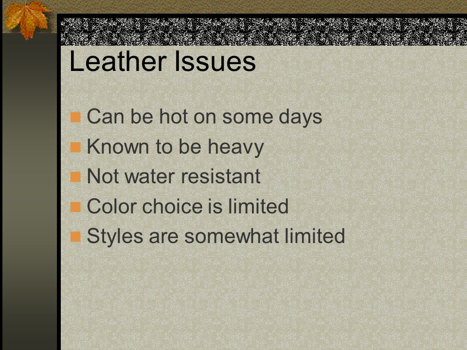 Leather Issues Can be hot on some days Known to be heavy Not water resistant Color choice is limited Styles are somewhat limited