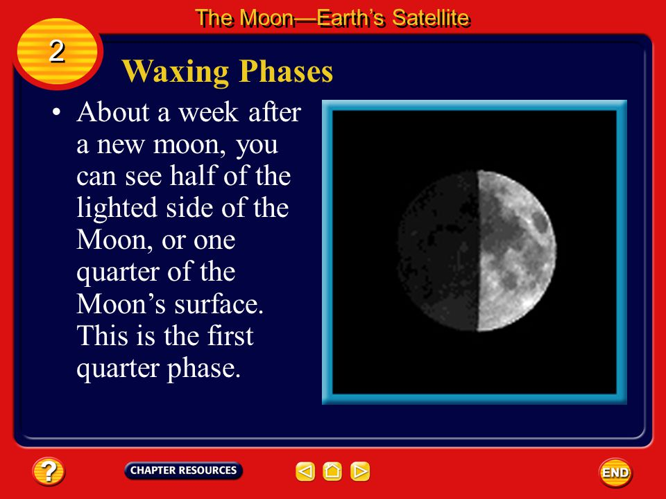 Waxing Phases After a new moon, the phases begin waxing. Waxing means that more of the illuminated half of the Moon can be seen each night. The Moon—E