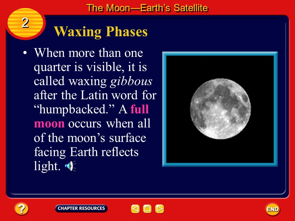 Waxing Phases About a week after a new moon, you can see half of the lighted side of the Moon, or one quarter of the Moon's surface. This is the first
