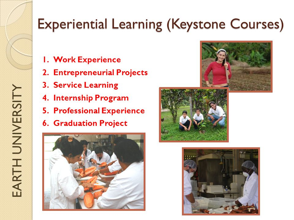 EARTH UNIVERSITY Experiential Learning (Keystone Courses) 1.Work Experience 2.Entrepreneurial Projects 3.Service Learning 4.Internship Program 5.Professional Experience 6.Graduation Project