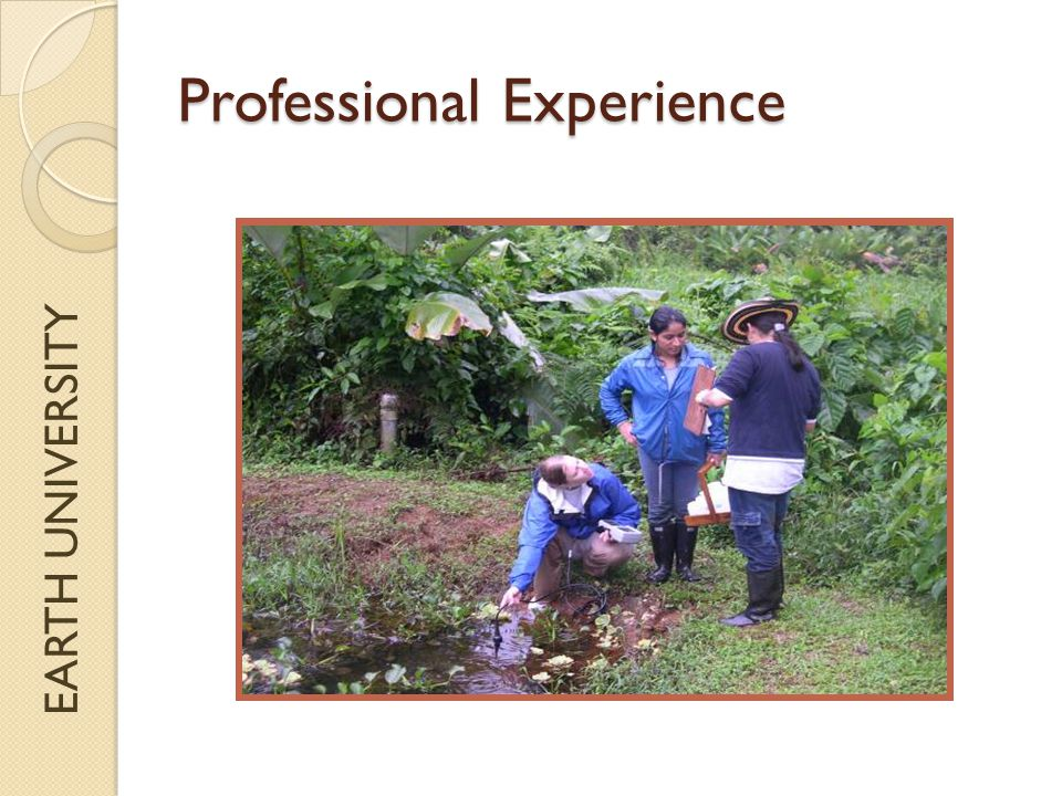 EARTH UNIVERSITY Professional Experience
