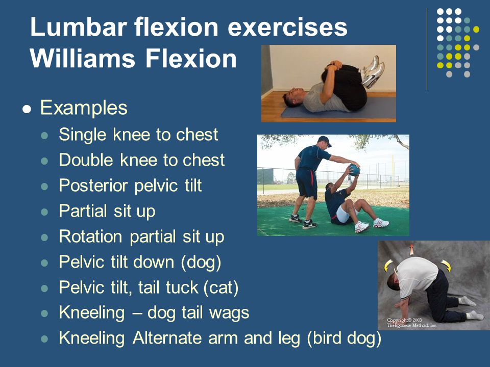 Lumbar flexion exercises Williams Flexion Examples Single knee to chest Double knee to chest Posterior pelvic tilt Partial sit up Rotation partial sit