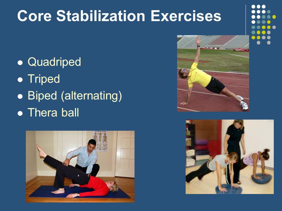 Core Stabilization Exercises Quadriped Triped Biped (alternating) Thera ball