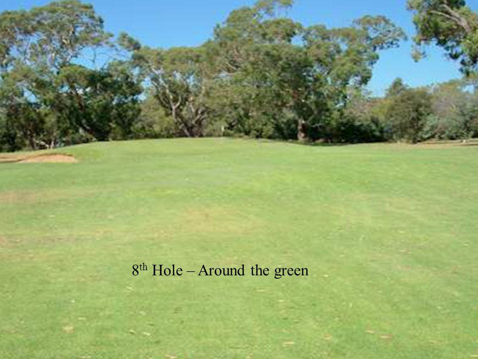 8 th Hole – Around the green