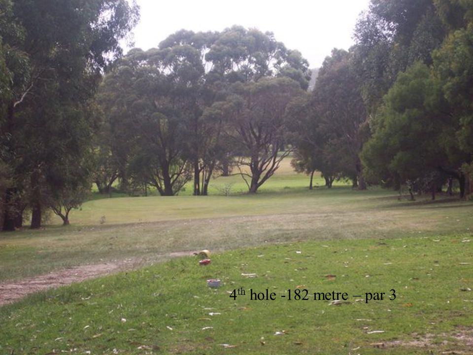 4 th hole -182 metre – par 3