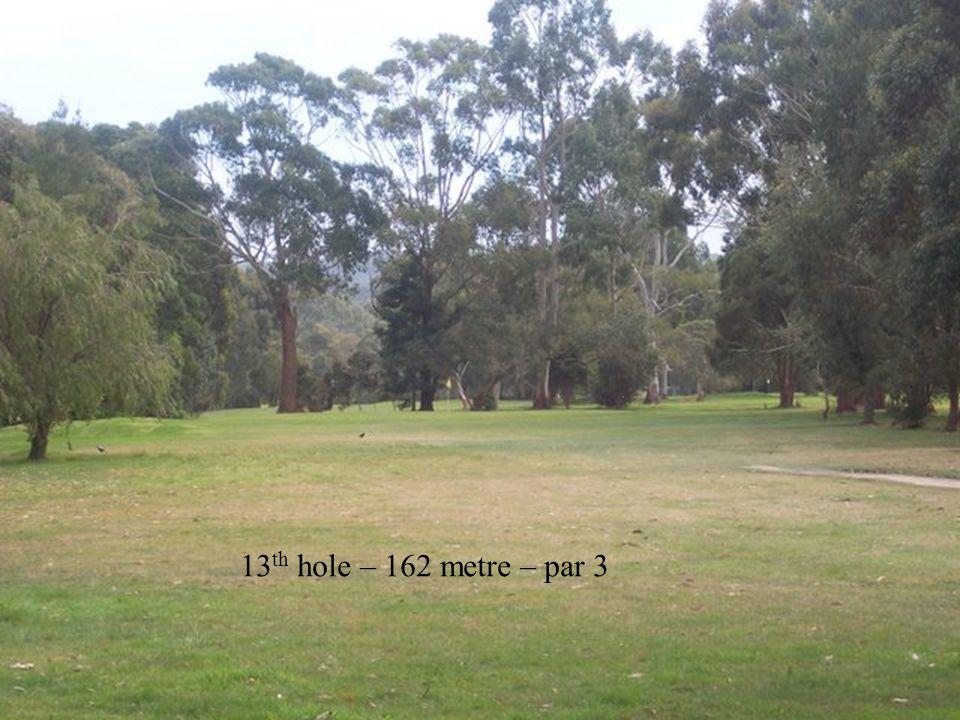 13 th hole – 162 metre – par 3