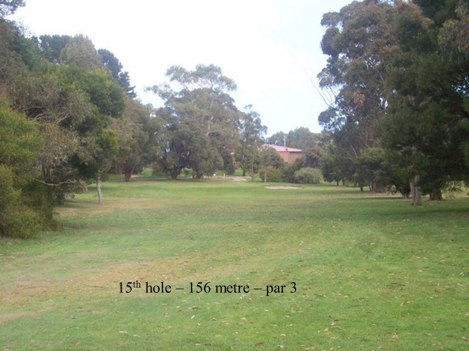 15 th hole – 156 metre – par 3