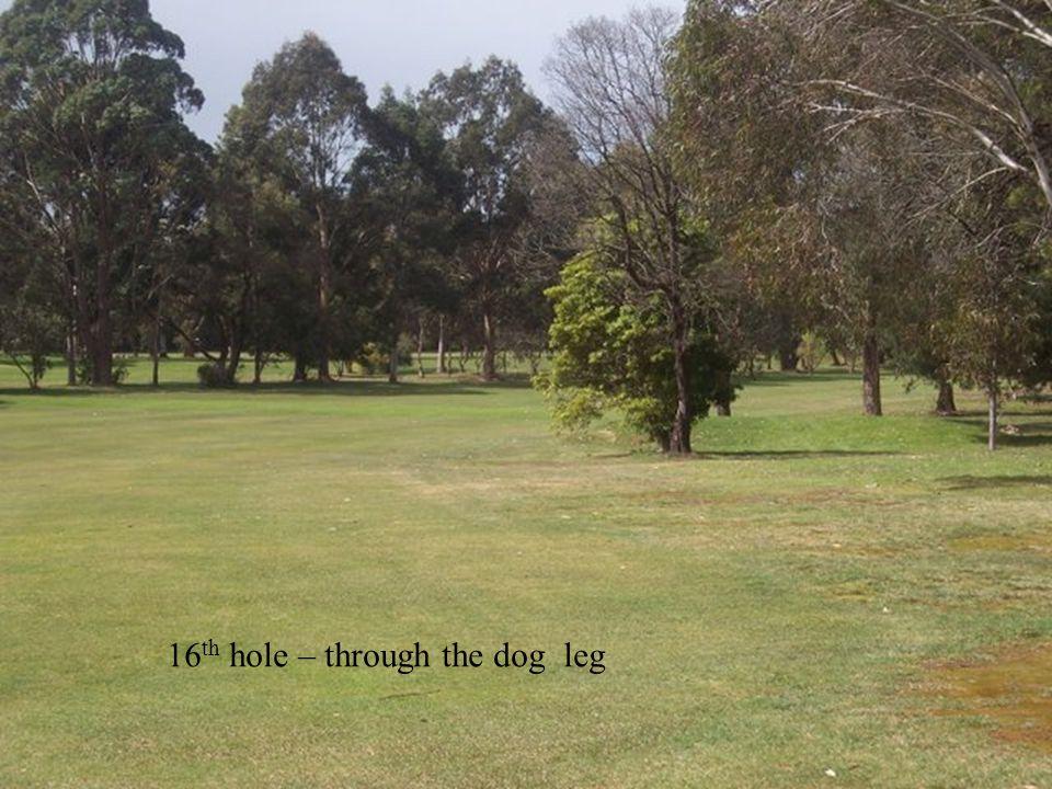 16 th hole – through the dog leg