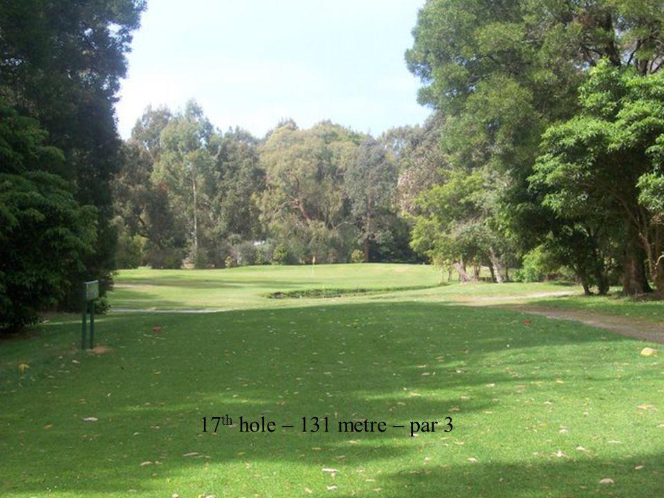 17 th hole – 131 metre – par 3