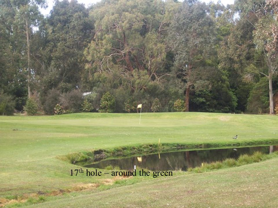 17 th hole – around the green