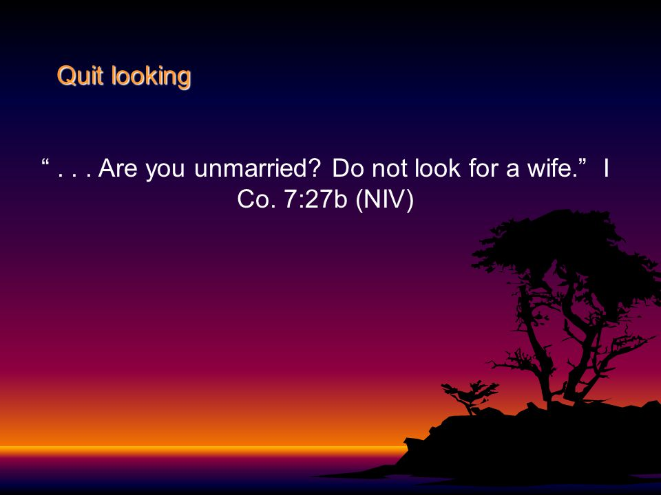 """Quit looking """"... Are you unmarried? Do not look for a wife."""" I Co. 7:27b (NIV)"""