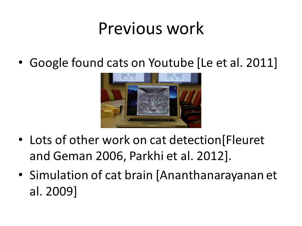 Previous work Google found cats on Youtube [Le et al. 2011] Lots of other work on cat detection[Fleuret and Geman 2006, Parkhi et al. 2012]. Simulatio