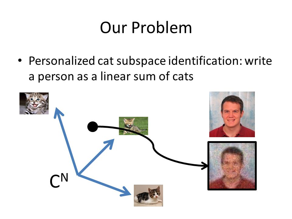 Our Problem Personalized cat subspace identification: write a person as a linear sum of cats CNCN