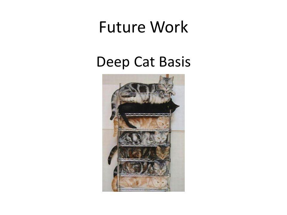 Future Work Deep Cat Basis