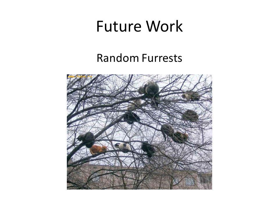 Future Work Random Furrests