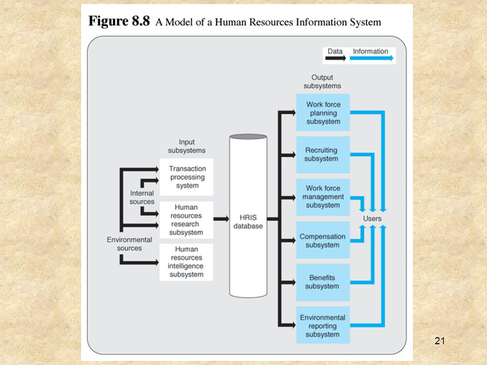22 The Executive Information System The executive information system (EIS) provides information to top-level managers on overall firm performance.