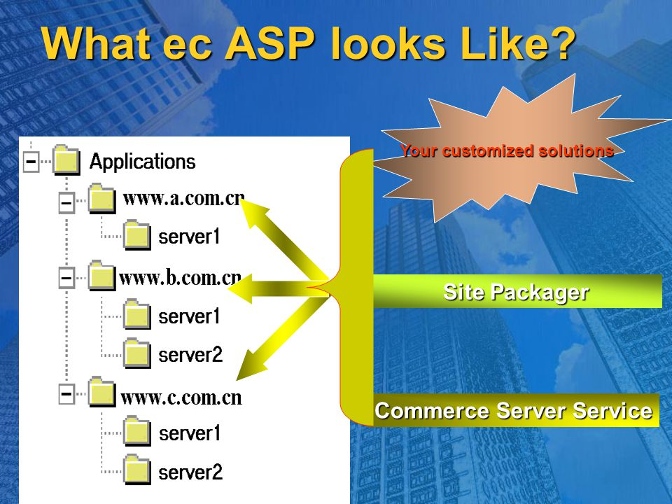 What ec ASP looks Like Your customized solutions Site Packager Commerce Server Service