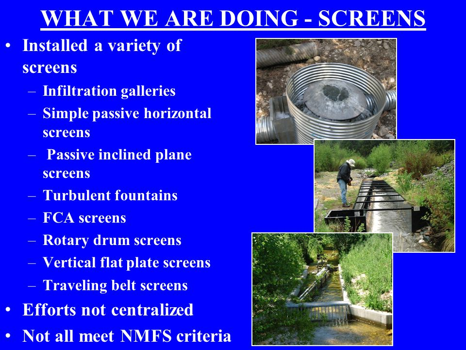 WHAT WE ARE DOING - SCREENS Installed a variety of screens –Infiltration galleries –Simple passive horizontal screens – Passive inclined plane screens –Turbulent fountains –FCA screens –Rotary drum screens –Vertical flat plate screens –Traveling belt screens Efforts not centralized Not all meet NMFS criteria