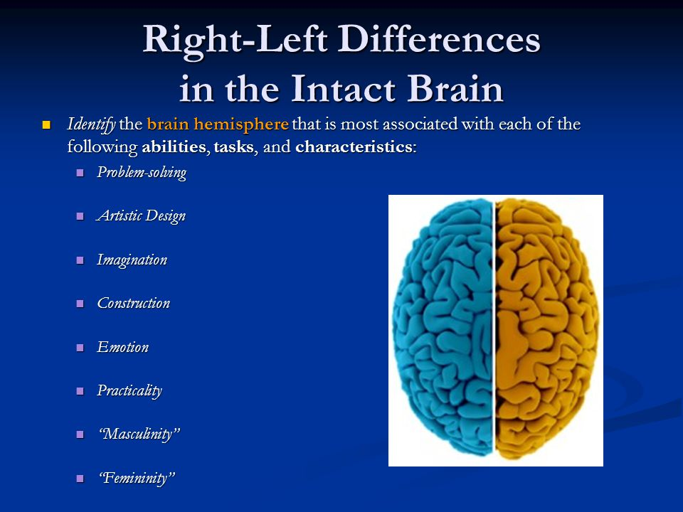 Right-Left Differences in the Intact Brain Identify the brain hemisphere that is most associated with each of the following abilities, tasks, and characteristics: Identify the brain hemisphere that is most associated with each of the following abilities, tasks, and characteristics: Problem-solving Problem-solving Artistic Design Artistic Design Imagination Imagination Construction Construction Emotion Emotion Practicality Practicality Masculinity Masculinity Femininity Femininity